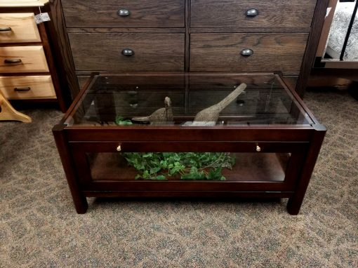 Curio Coffee Table 1