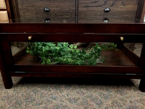 Curio Coffee Table 4