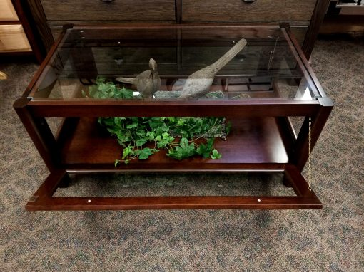 Curio Coffee Table 5