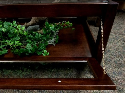 Curio Coffee Table 6